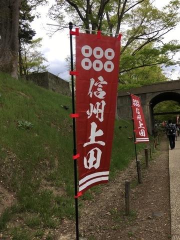 004-spring2019.jpg