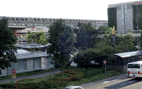 august2021-NSD-kano-73.JPG