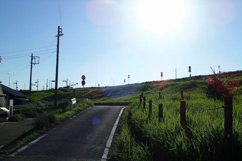 august2021-NSD-kano_goudo-33.JPG