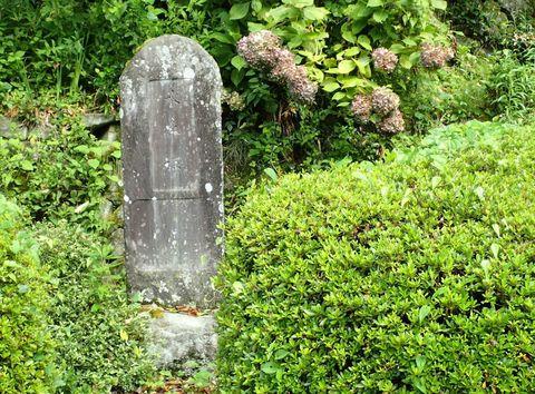august2021-NSD-magome_tsumago-32.JPG