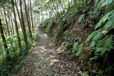 august2021-yamanouefuji-takagiyama-20.JPG