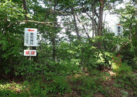 august2021-yamanouefuji-takagiyama-27.JPG