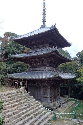 hyogo-shiga_2020nov-02-39.jpg