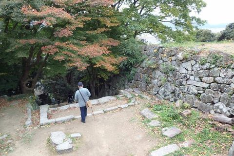 hyogo-shiga_2020nov-02-40.jpg