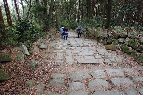 hyogo-shiga_2020nov-02-46.jpg