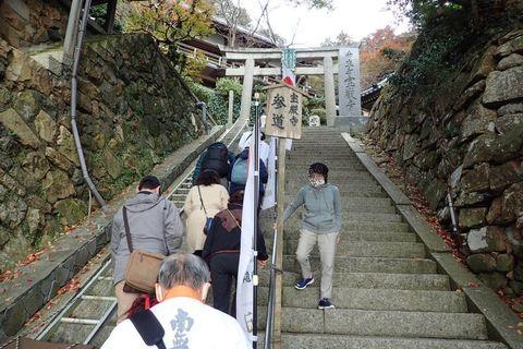 hyogo-shiga_2020nov-03-28.jpg
