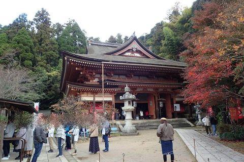 hyogo-shiga_2020nov-03-40.jpg