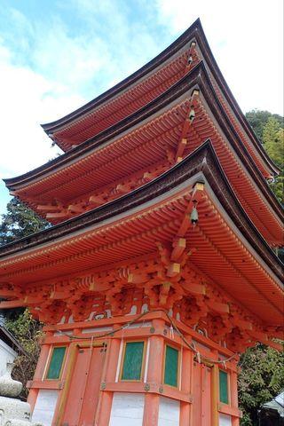 hyogo-shiga_2020nov-03-41.jpg