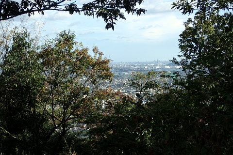 igiyama-27august2020_012.JPG
