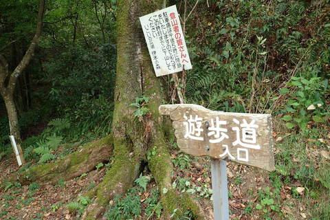 igiyama-27august2020_05.JPG
