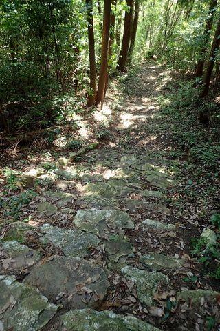 kitayama-gongenyama-30aug2020-038.JPG
