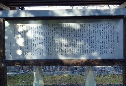 koguchi-2021feb-2.JPG