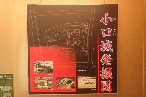 koguchi-2021feb-7.JPG