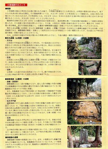 mizunami-ori-2021may-0005.jpg