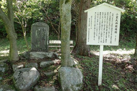 mizunami-ori-2021may-12.JPG