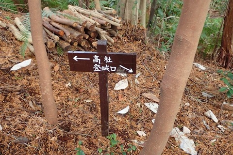 mt-takayasiro-2021jan- (43).jpg