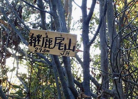 mt-tsugao_14nov2020-017.jpg