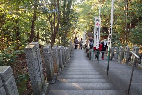 mt-tsugao_14nov2020-032.jpg