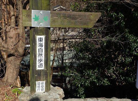 oniiwa-2021feb-04.JPG