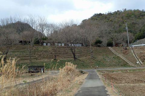 onitobi-feb2021-101.JPG