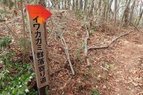 onitobi-feb2021-62.JPG