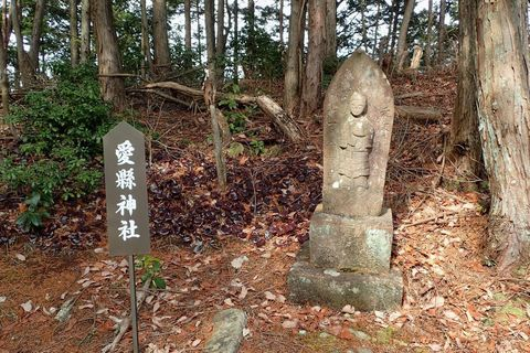 onitobi-feb2021-72.JPG