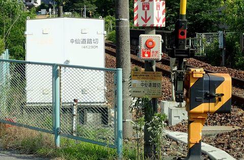 ota-fushimi-mitake-NSD-2021june-06.JPG