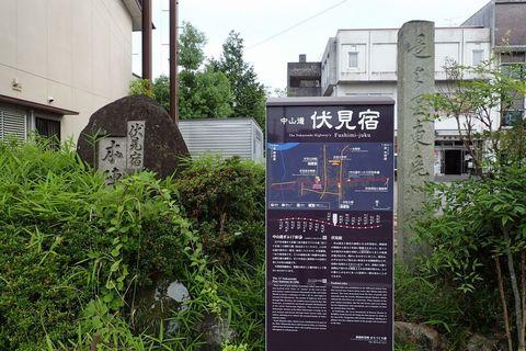 ota-fushimi-mitake-NSD-2021june-36.JPG