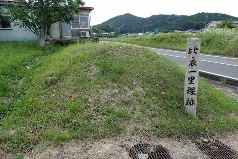 ota-fushimi-mitake-NSD-2021june-49.JPG
