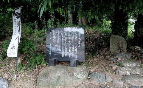 ota-fushimi-mitake-NSD-2021june-51.JPG