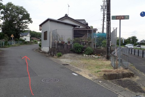 ota-fushimi-mitake-NSD-2021june-57a.JPG