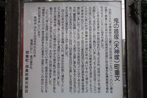 ota-fushimi-mitake-NSD-2021june-61.JPG