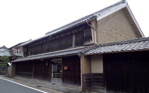 ota-fushimi-mitake-NSD-2021june-65.JPG