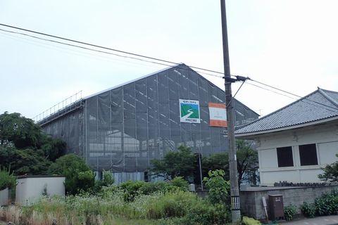ota-fushimi-mitake-NSD-2021june-67.JPG
