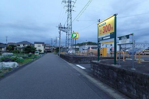 ota-fushimi-mitake-NSD-2021june-73.JPG