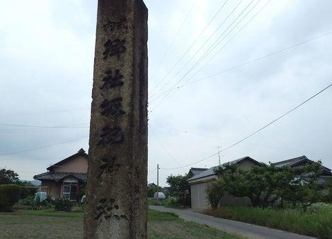 otajyuku-unumajyuku_sakahogi-2021june-33.JPG
