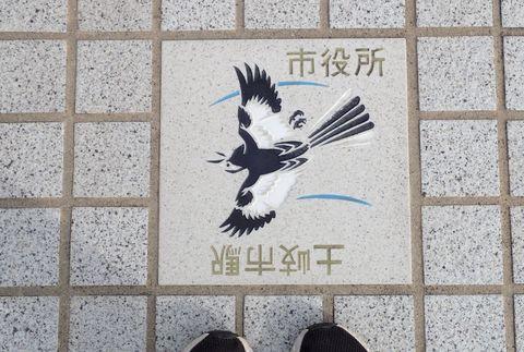 toki-takayama-2021may_117.JPG