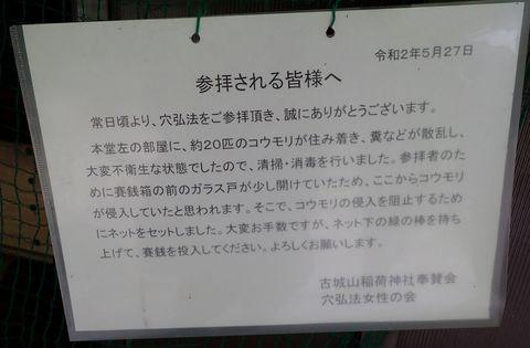 toki-takayama-2021may_60.JPG