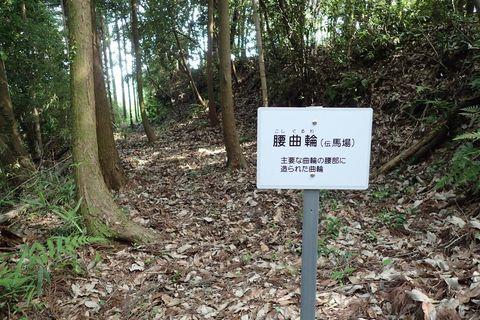 tsurugajyo-tenjinyama-2021june-08.JPG