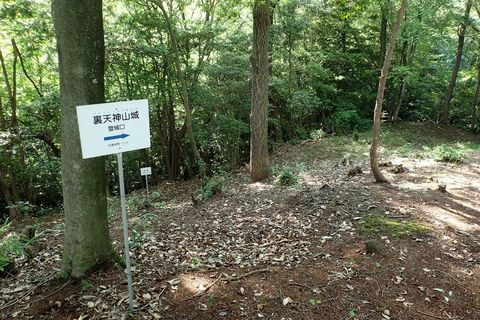 tsurugajyo-tenjinyama-2021june-55.JPG